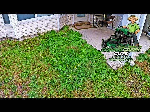 New Property Full of Tall Weeds Gets Front & Back Yard Clean-Up