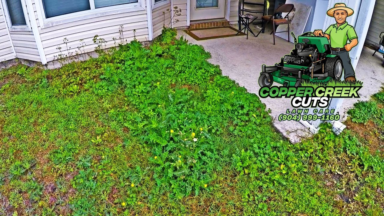 New Property Full of Tall Weeds Gets Front & Back Yard ...
