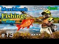 MHGU Prowler Quest Chapter 13 Village 4 ★★★★ MARSHLANDS FISHING? Gather Mission Gameplay