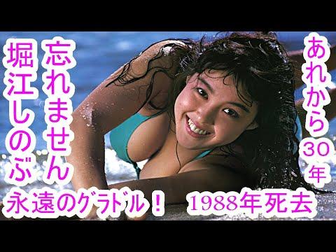 死去から30年【堀江しのぶ】■【元祖グラドル】★最高な笑顔!最高なナイスバディ!忘れません。