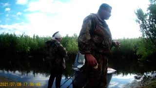 Спала вода Началась летняя рыбалка Удачно попали на клёв окуня