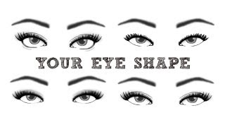 Finding Your Eye Shape   TheMakeupChair