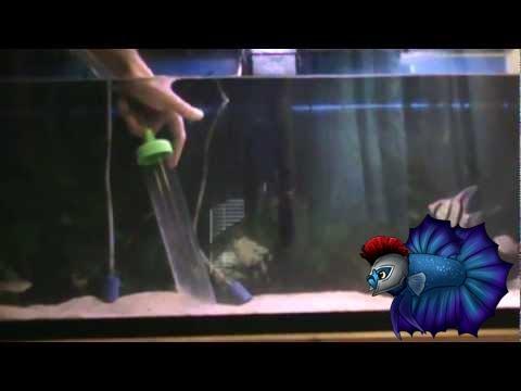 5 Best Aquarium Gravel Cleaners Home Aquaria