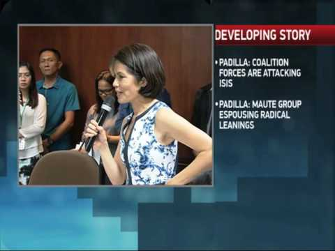 Lopez promises to 'clean up' DENR after reappointment