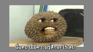 Repeat youtube video ส้มvsทุเรียน ภาคใต้