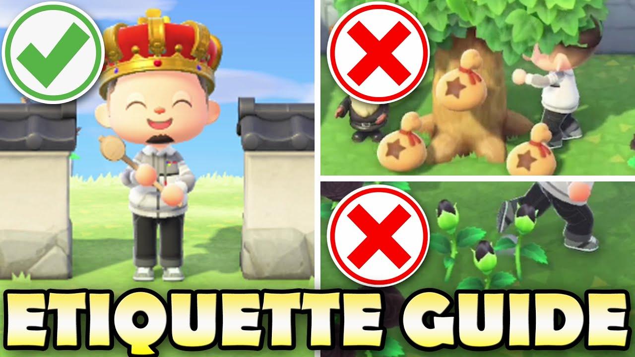 Best Etiquette Guide For Animal Crossing New Horizons Do S