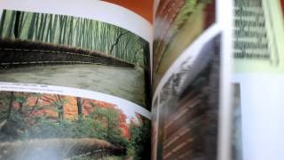 Design Of Japanese Bamboo Fence Book Wall,gardening,garden,architecture (0338)