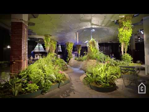 Harvesting natural light for an underground park | Curbed