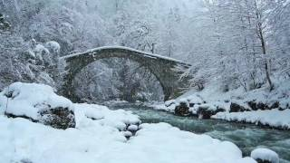 Snowstorm & Icy Cold River | Falling Snow & Polar Wind | Sounds of Winter