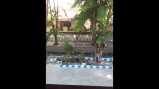 Video Tk al huda banyuwangi download MP3, 3GP, MP4, WEBM, AVI, FLV Agustus 2018