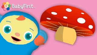 Dinosaur and More! | Hide and Seek for Babies | Peek-A-Boo, I See You | BabyFirst TV