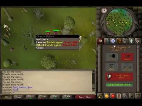 Runescape 2007-Clue Help 09-Panic in the heart of the Haunted Woods.Have no items equipped.