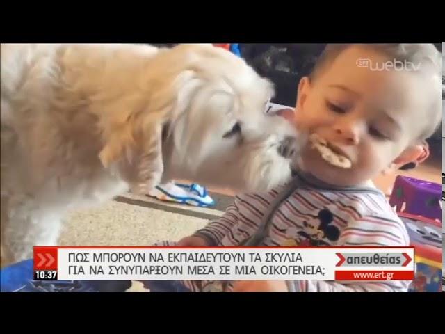 Πως θα ζήσει αρμονικά ο σκύλος μας στην οικογένεια μας- Δρ. Χρήστος Καραγιάννης-  13 09 2019   ΕΡΤ
