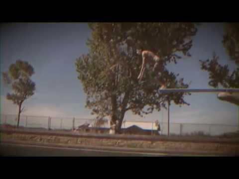 """THE GOOCH PALMS """"Tiny Insight"""" OFFICIAL VIDEO CLIP"""