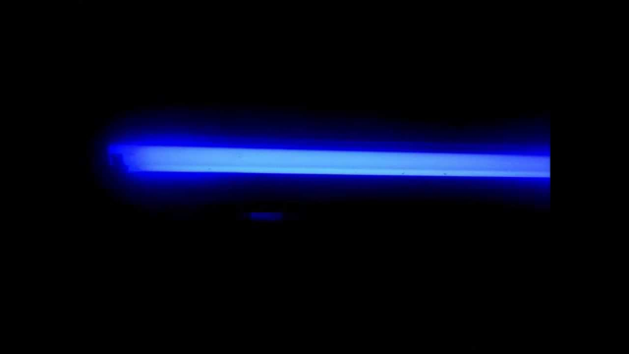 blue actinic lighting how to build a reef tank part 6 a youtube