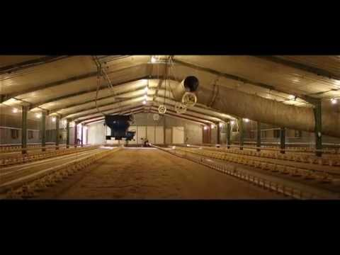 IWS - Poultry Farm Water Treatment 2016