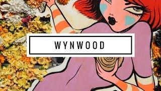 ARTE URBANA EM MIAMI Dicas de Wynwood e passeio por Wynwood Walls.