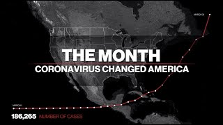 How did we get here? Americans' response to coronavirus in March