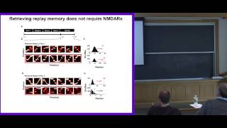 David Foster: Neuronal sequences in the hippocampus for memory and imagination
