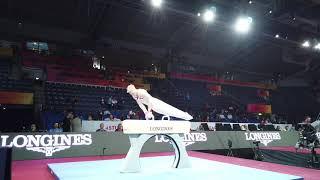 Gymnastics Worlds 2019: Team NOR Highlights