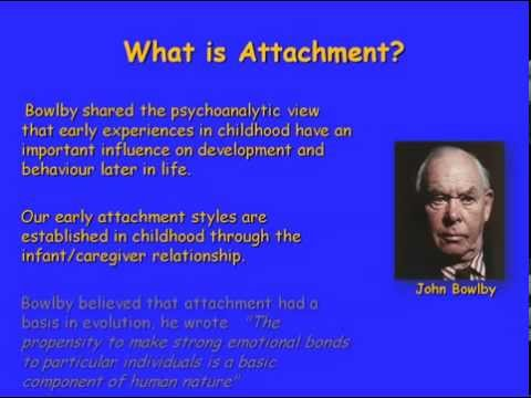john bowlby and maternal deprivation essay