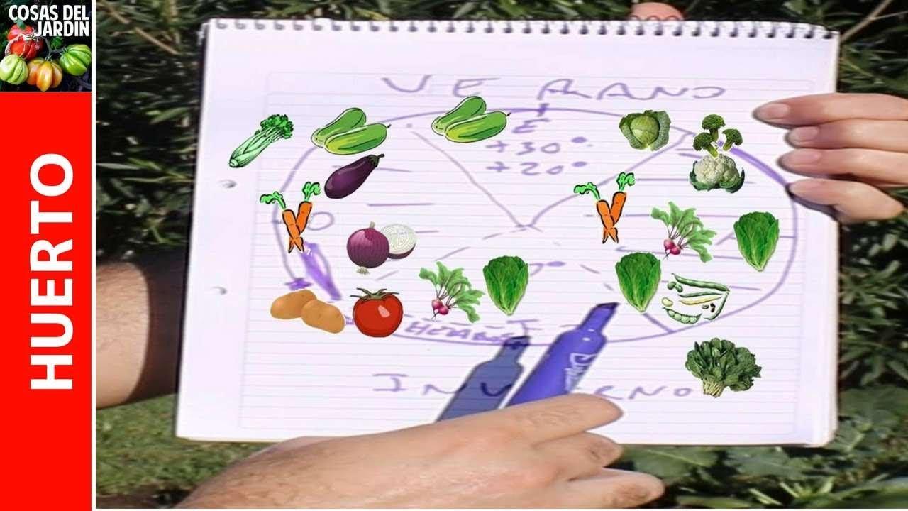 La Huertina De Toni Calendario De Siembra.How To Make Your Own Annual Sowing Calendar Easy And Surprising