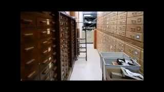 ISM Hot Science: The Importance of Museum Collections
