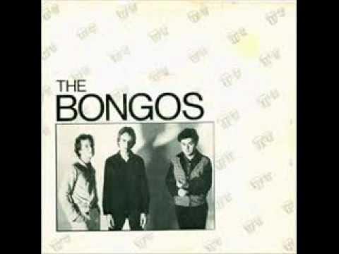 The Bongos Barbarella
