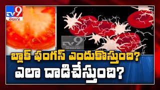 ఆదిలాబాద్ భైంసాలో బ్లాక్ ఫంగస్ కలకలం - TV9
