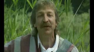 Henri Dès chante Les petits canards