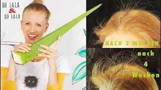 So wachsen eure Haare wie verrückt * Haarausfall stoppen * schon nach 2 Wochen ganz viele neue Haare