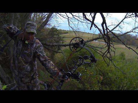 Urban Kentucky Deer Hunt