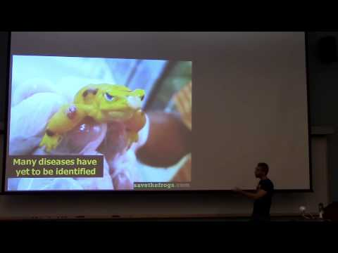 One Health Seminar: Amphibian Conservation in Belize