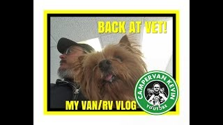 Martini Goes Back To Vet! Vet Has Strong WARNING For Pet Owners!!!