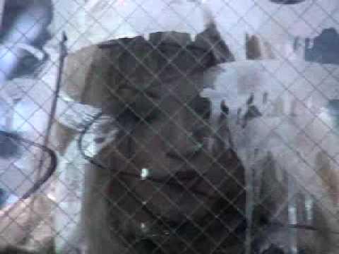 "Vulgaras  ""ManMaid"" (2002)"