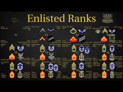 Us Military All Branches Enlisted Ranks Explained What Is A