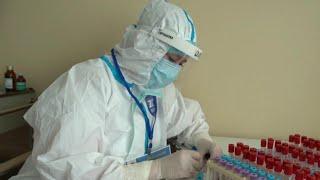В России за сутки выявили 9 393 новых случаев коронавируса