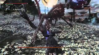 Bloodborne Moon Presence ng+
