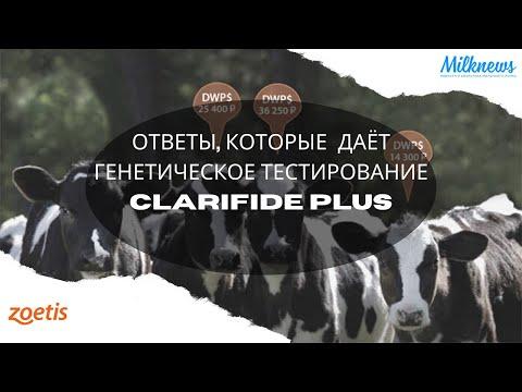Ответы, которые даёт генетическое тестирование CLARIFIDE PLUS