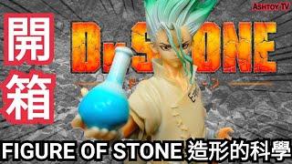 《玩具開箱》新石紀 造形的科學 第一隻景品 石神千空 Dr. Stone Figure Of Stone Ishigami Tenku