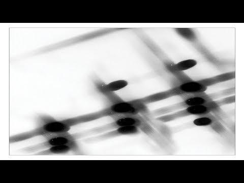 Gregor Samsa - 27:36 [Full EP]