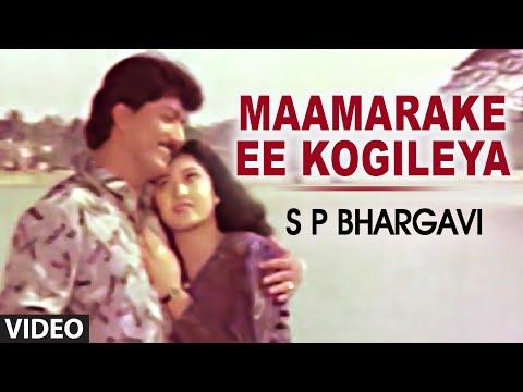 Maamarake Ee Kogileya Video Song I S P Bhargavi I Devaraj, Malasri