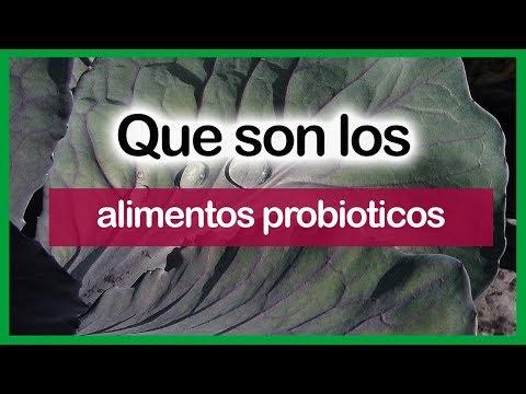 q son alimentos probioticos y prebioticos. PROBIOTICOS NATURALES