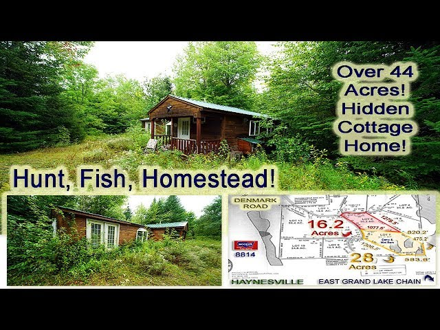 Land, Maine Woods Home For Sale | Over 44 Acres! MOOERS REALTY #8814