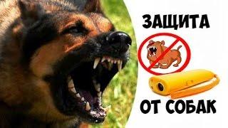 Отпугиватель СОБАК Защита от Собак с ALIEXPRESS