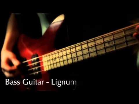 Timber Tones - Lignum Vitae sur une basse