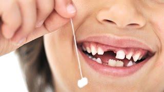 Почему меняются зубы? Рассказываем детям про зубы.