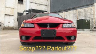1999 SVT COBRA scrapped/ parted out?