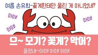 [손유희61]여름손유희-꽃게한테 물렸네~아야!!