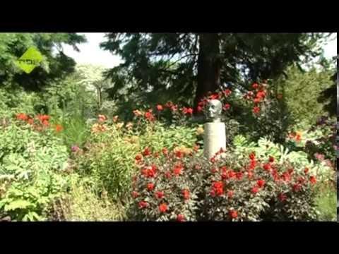TIDE Ferienakademie - Sommer 2014 - Botanischer Garten